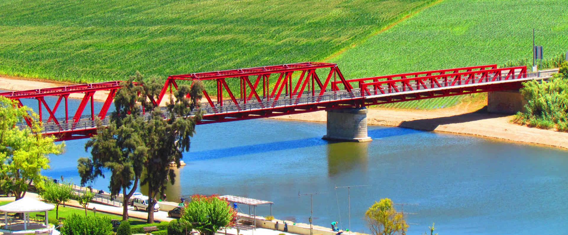 coruche_ponte